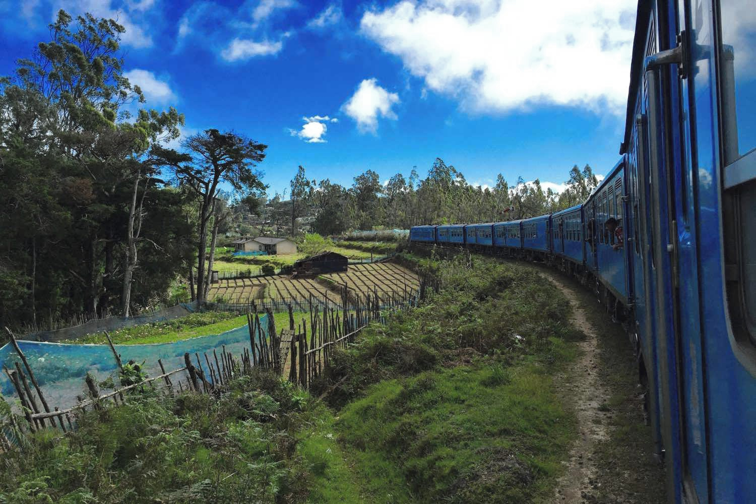 Sri-Lanka-Ella-Kandy-Train-Rice-Paddy-Tea-Feilds